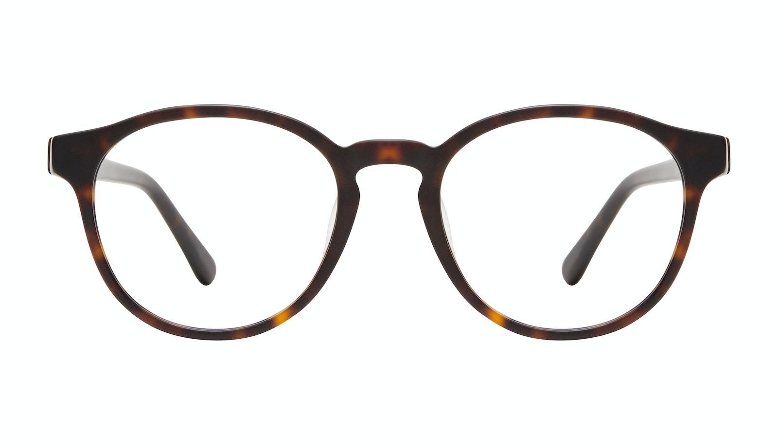 Lunettes tendance Ronde Lunettes de vue Hommes Aussie XL Matte Tortoise