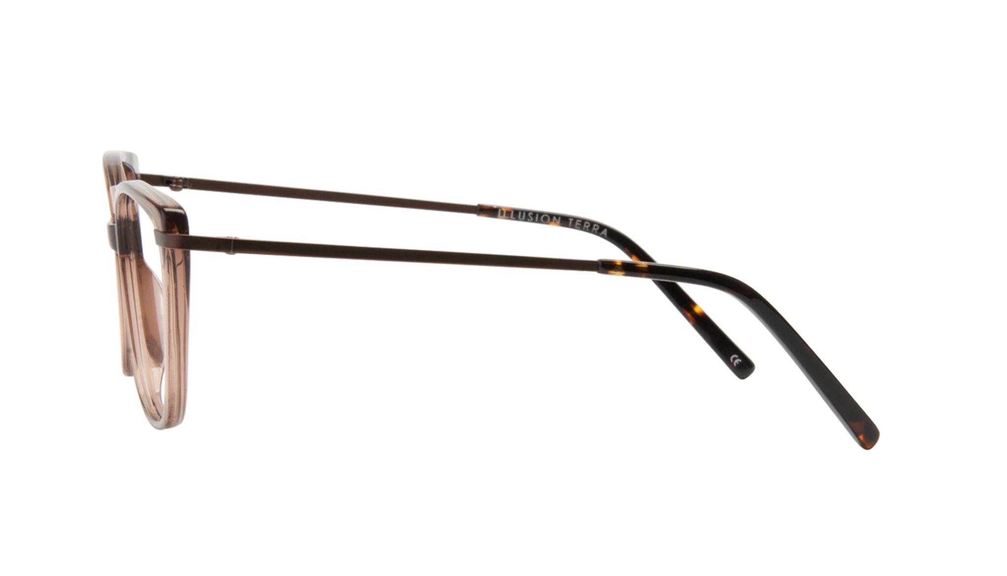 Affordable Fashion Glasses Cat Eye Rectangle Square Eyeglasses Women Illusion Terra Side