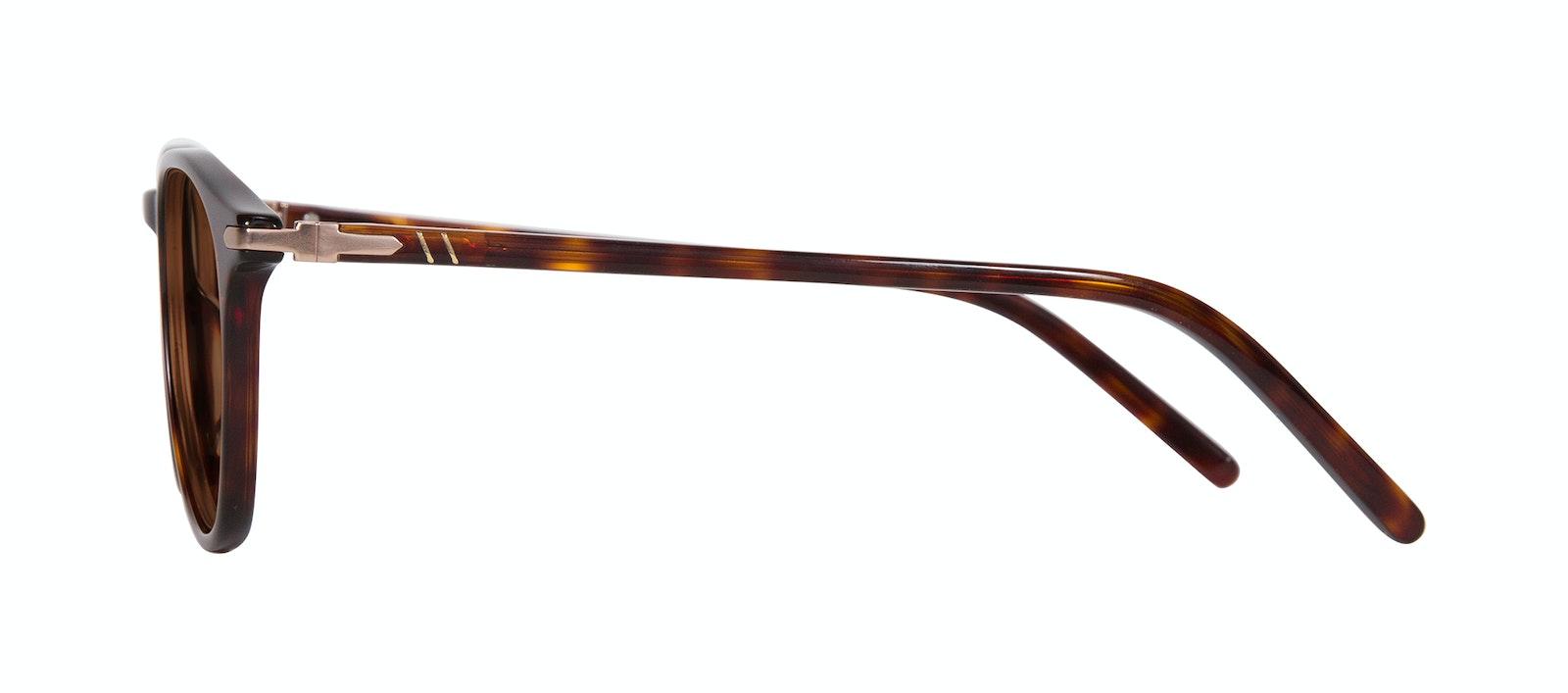 Lunettes tendance Ronde Lunettes de soleil Hommes Looks Tortoise Profil